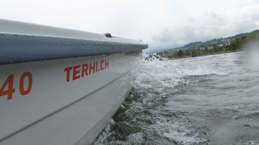 Terhi 440 Ruderboot
